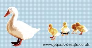 ducks_edited-4
